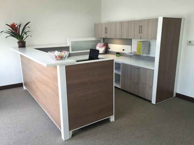 Matrix Reception Station with Back Credenza Client Space